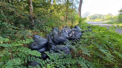 Tientallen zakken vol hennepafval gedumpt in berm in buitengebied van Enschede